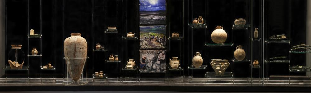 Archaeology Museum Display Case