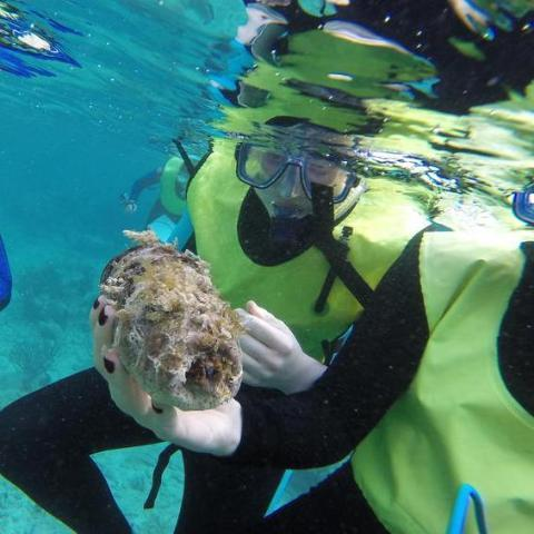 Students snorkeling underwater